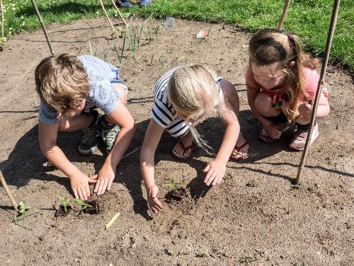 Groene vingers en culinaire kunsten op Gezonde School de Nettelhorst